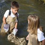 Oyster Nursery Program