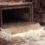 Stormwater Restoration